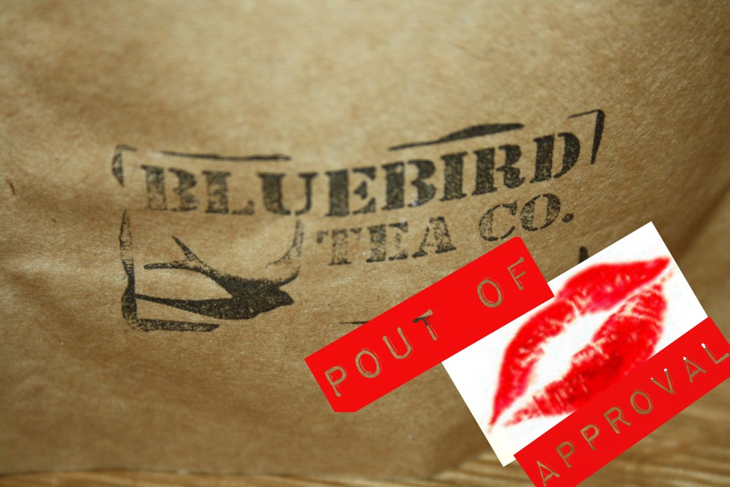 Pout of approval bluebird
